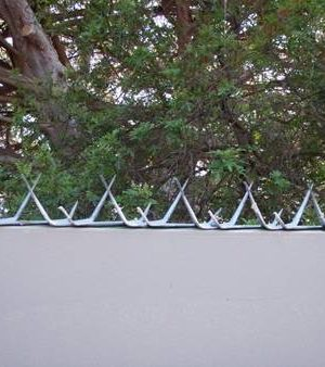 Clearview Fence Security Tiger Spikes